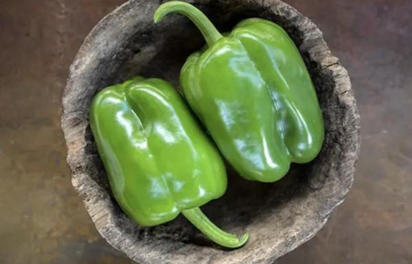 Ozark Giant Bell Peppers