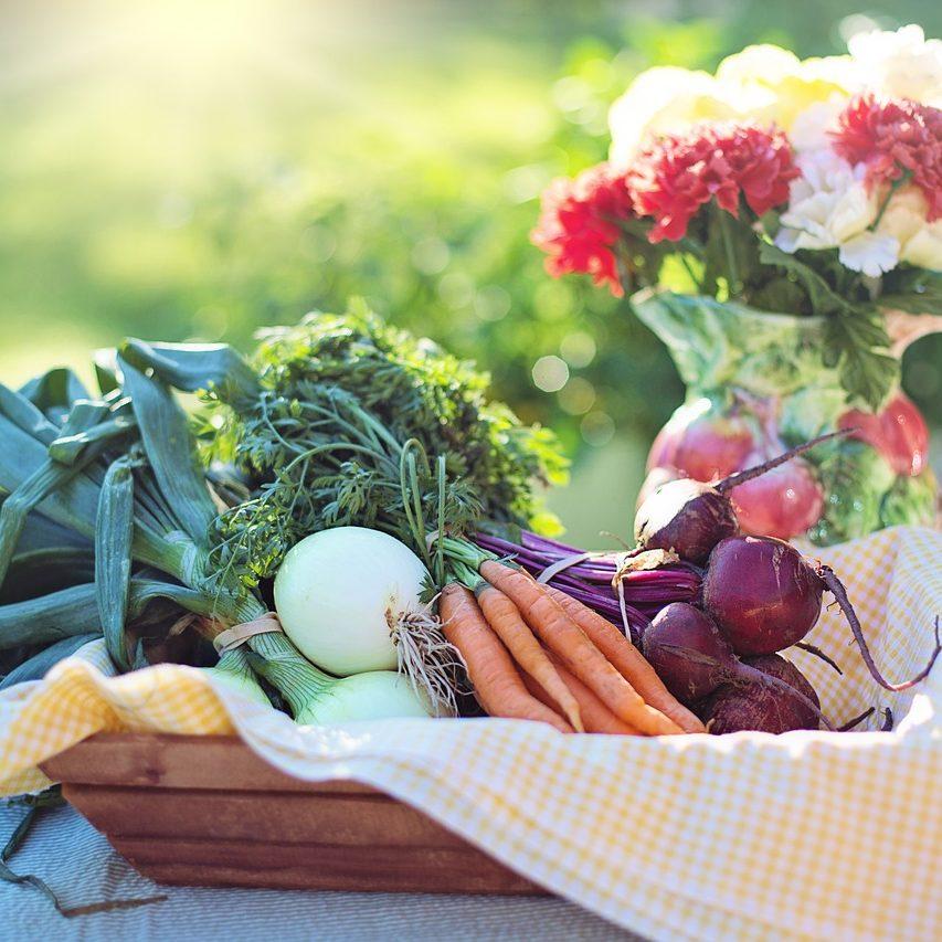 vegetables-2485056_1280